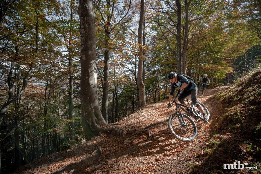 Mountainbike Tour Lago Maggiore Cardada Bike Cimetta einfach