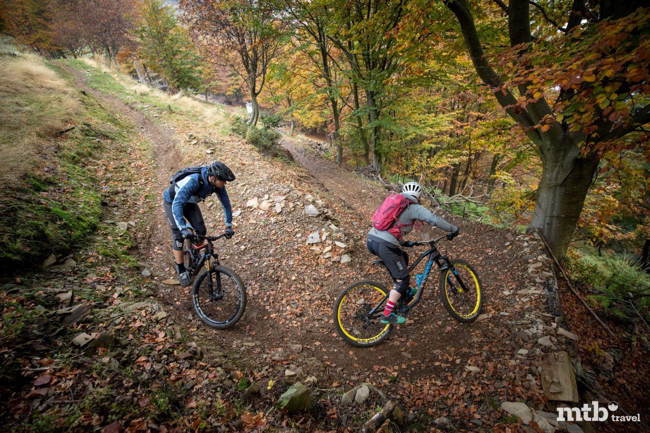 Kurven Alpe di Neggia Trail Mountainbike Lago Maggiore Monte Tamaro Tour