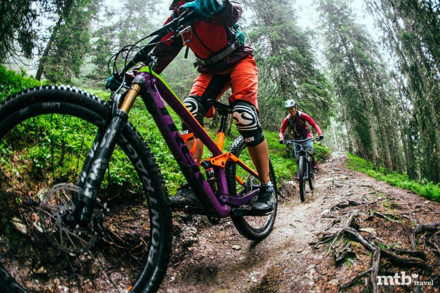 MTB Region Saalbach Hinterglemm Trail