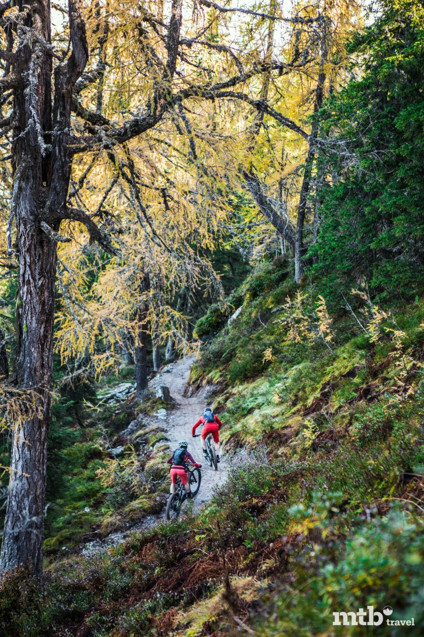 Buckelwald Trail Schladming