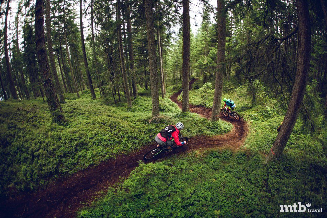 Mountainbike Trail Salzburger Land Wilkogel Bramberg