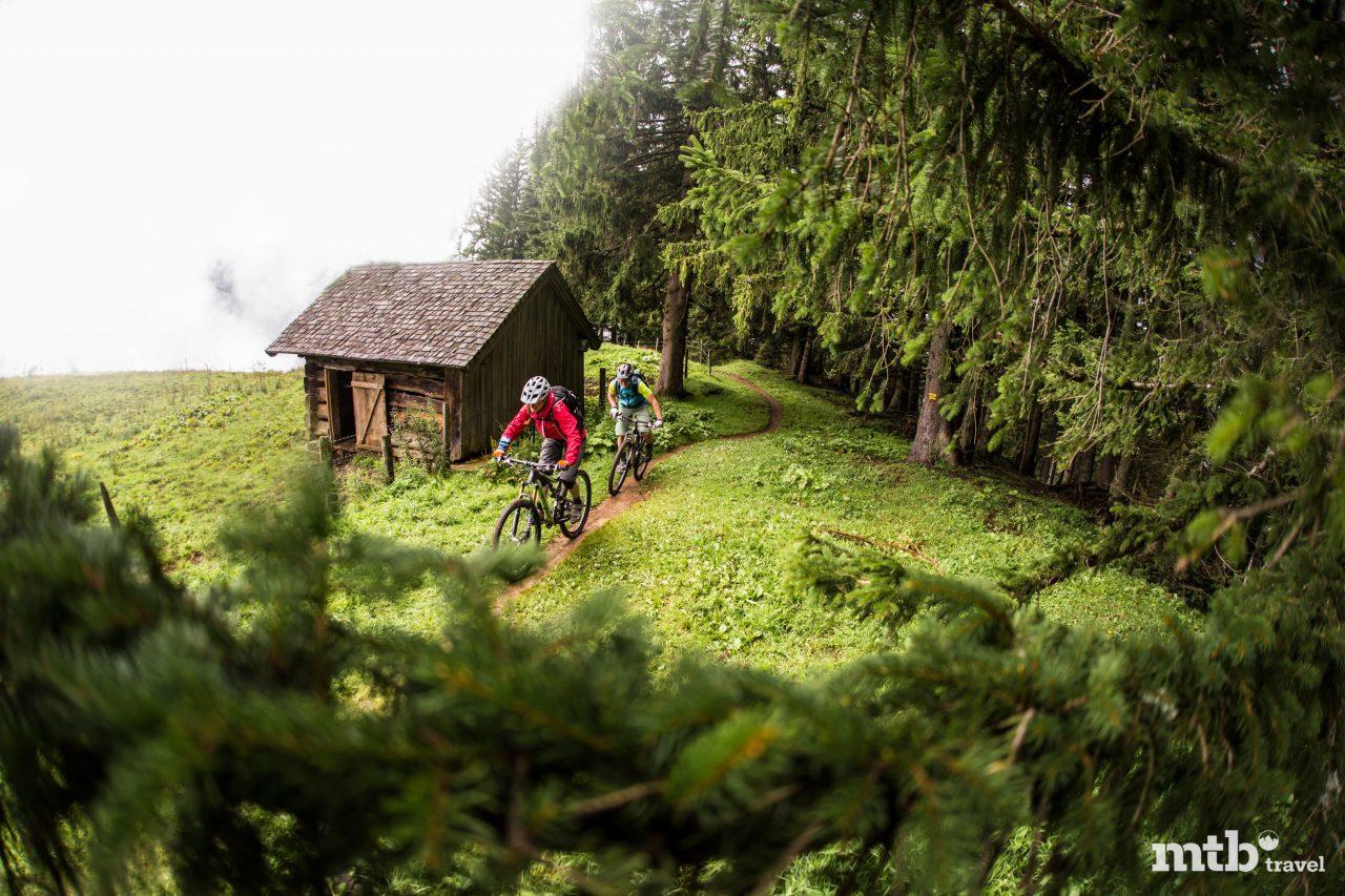 Mountainbike Regen Mystische Stimmung