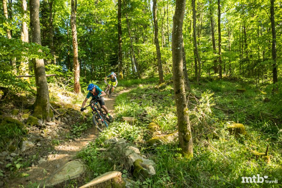 Mountainbike Trail Legal Baden Württemberg Schwarzwald