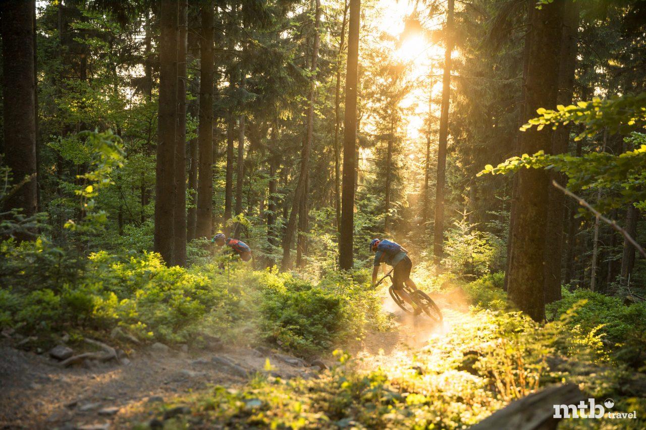 Mountainbiken Schwarzwald Sasbachwaldener Trail