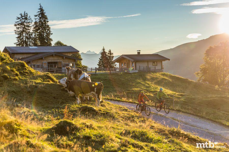 Tipps rund um die Kitzbüheler Alpen