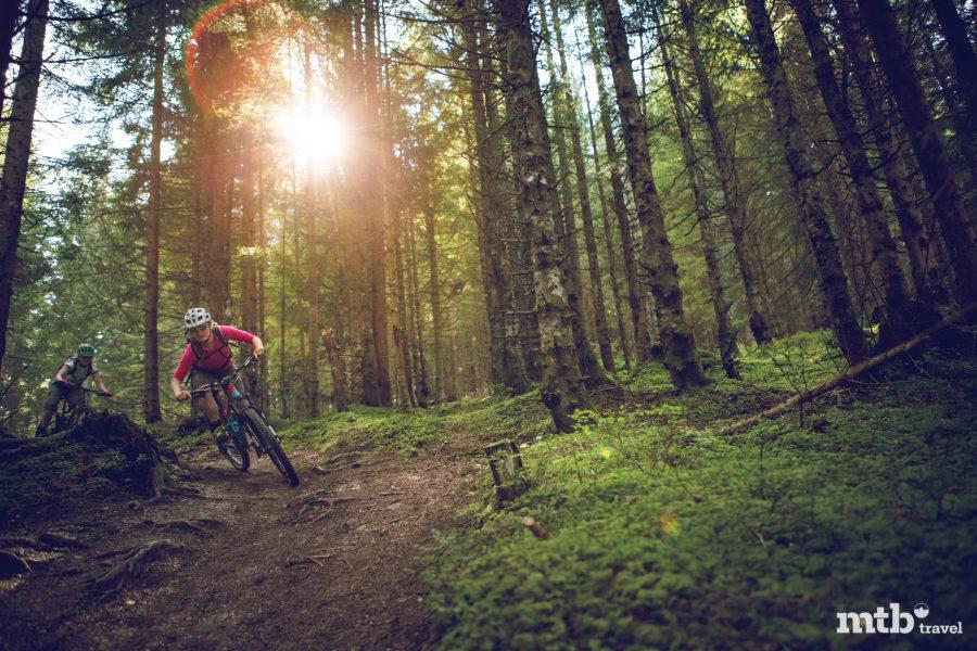 Maria Alm am Hochkönig, Trail, Sonne