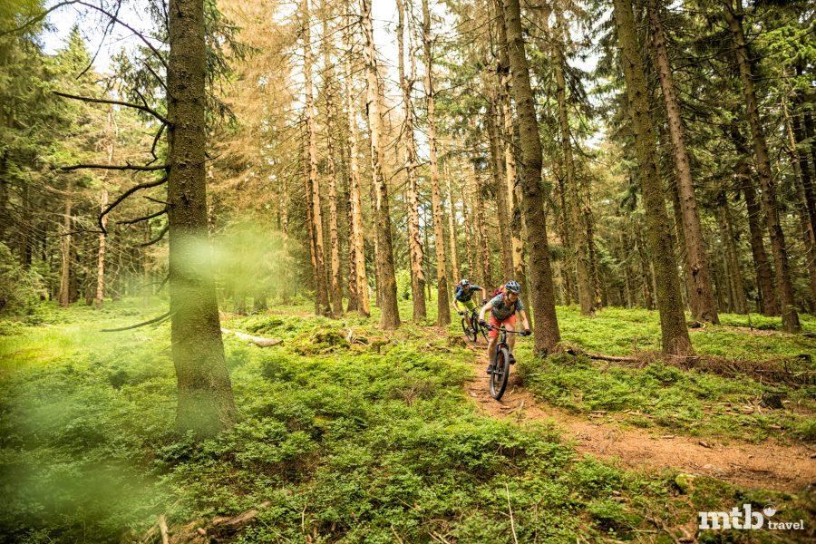 Nachhaltiges Mountainbiken - 8 Dinge, die ein Biker tun kann