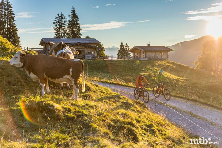 Sommer Card Kitzbüheler Alpen