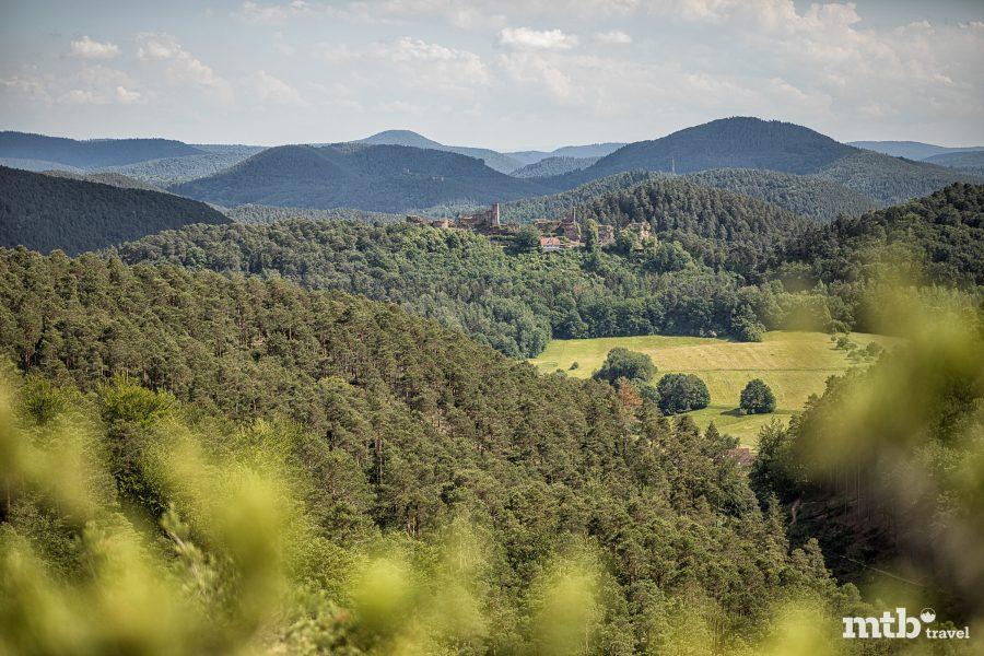 Besonderheiten Mountainbikepark Pfälzerwald