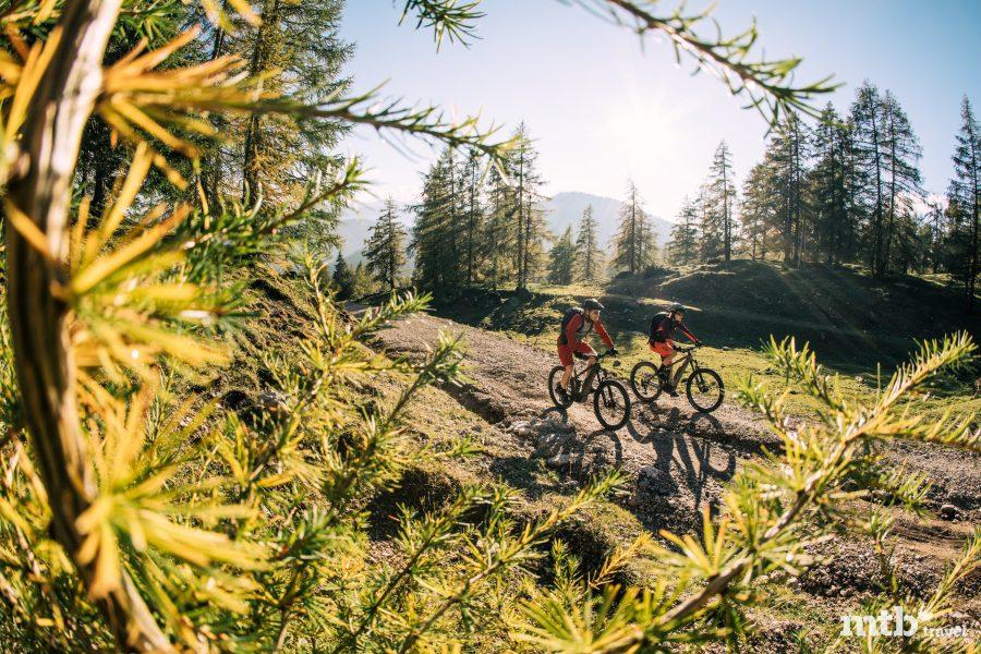 Reiteralm Trails | Junior Trails, Preise & Zeiten und Bike-Verleih