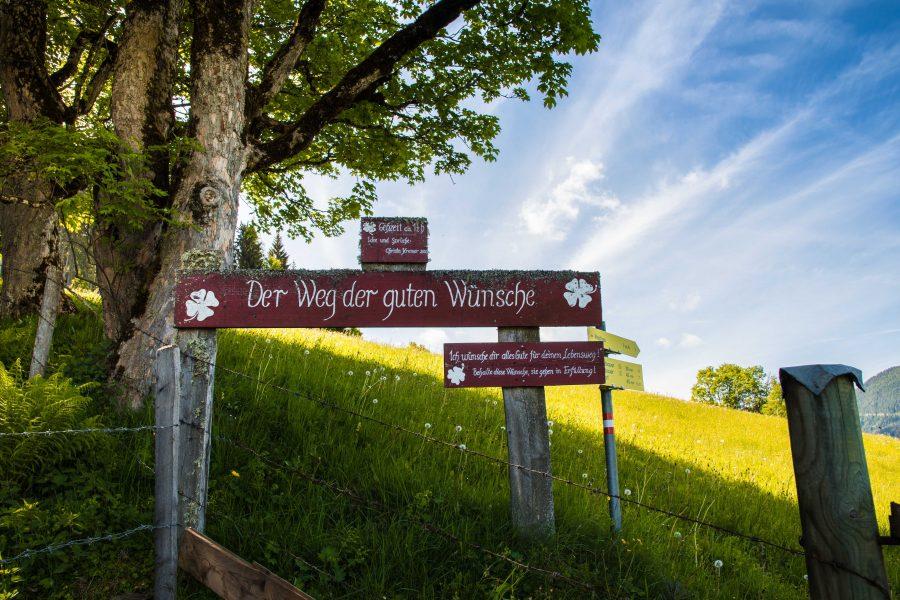 Waldtanken in der Salzburger Sportwelt_Weg der guten Wünsche