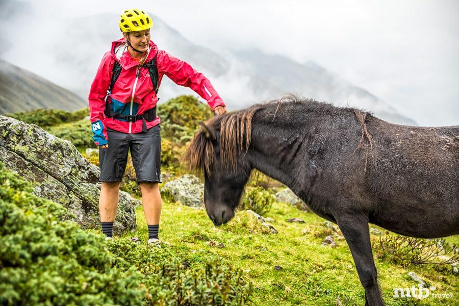 Alps Epic Trail in Davos