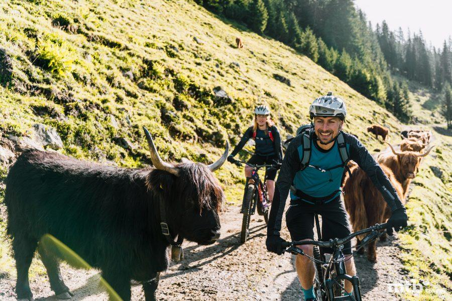 Bike & Hike in Montafon