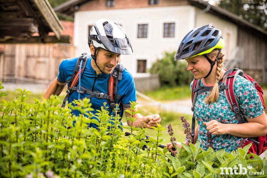 Bike Region Bayerischer Wald