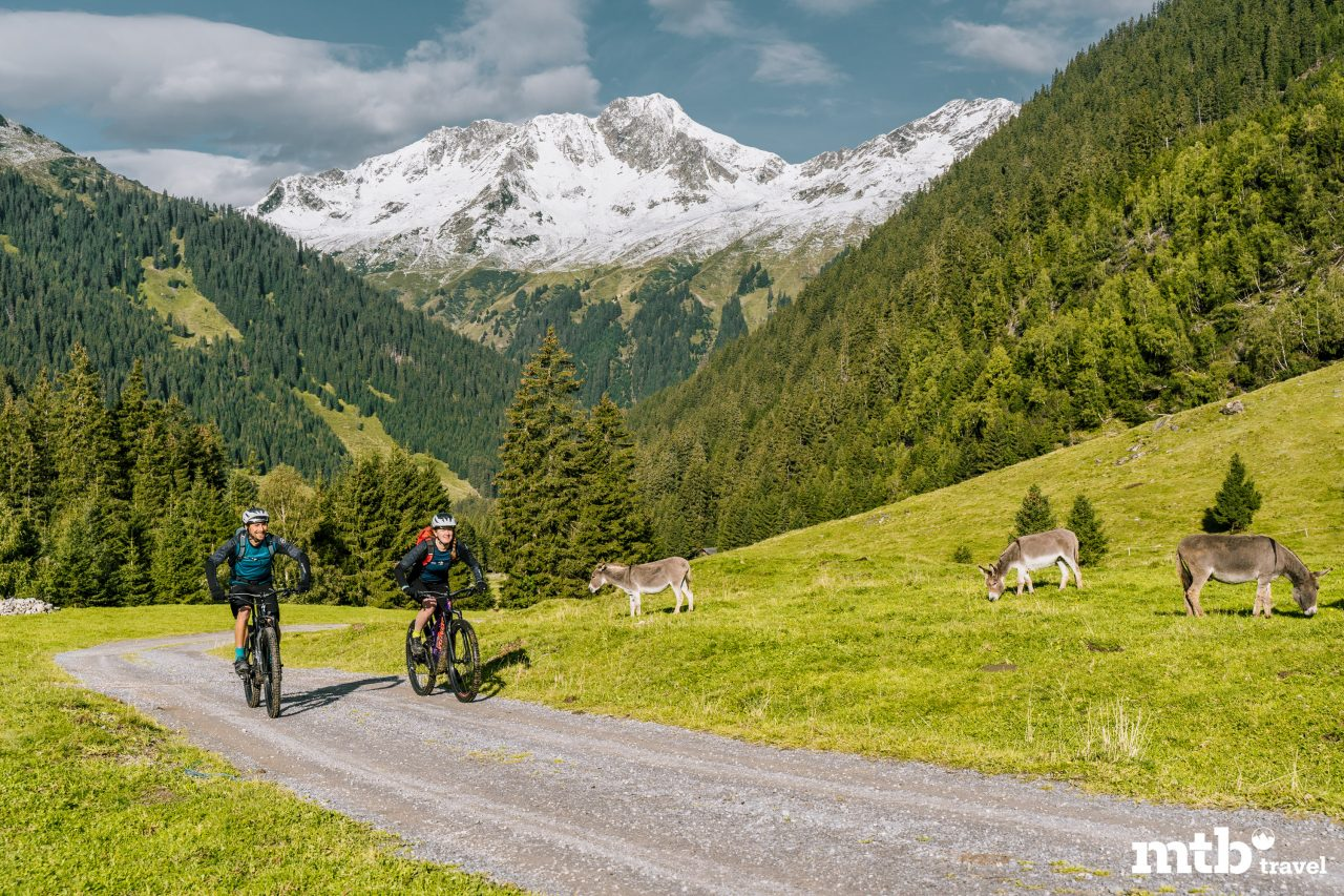 Bike Urlaub im Montafon Esel