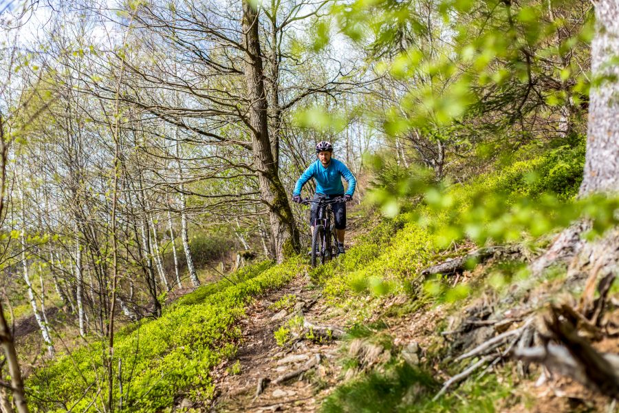Fahrtechnik Basics für E Mountainbiker Entspannter Cowboy